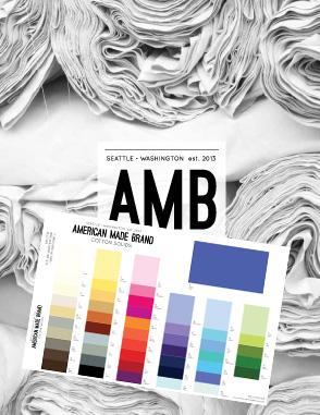 AMB_color_card